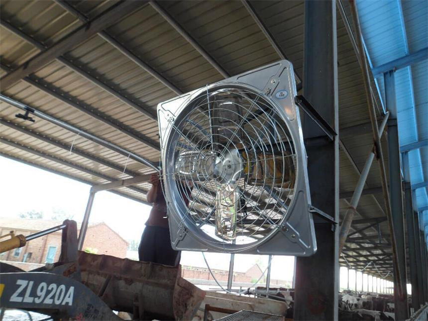 circulation hanging exhaust fan, cowhouse dairy farm hanging exhaust fan